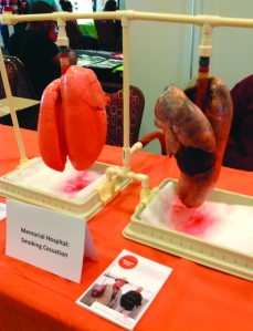 Pig heart health declines from secondhand smoke