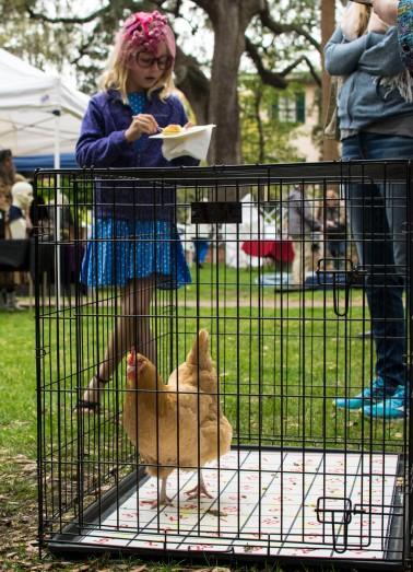 Chicken bingo with Goldie the Chicken. Photo by Laura Weyman.